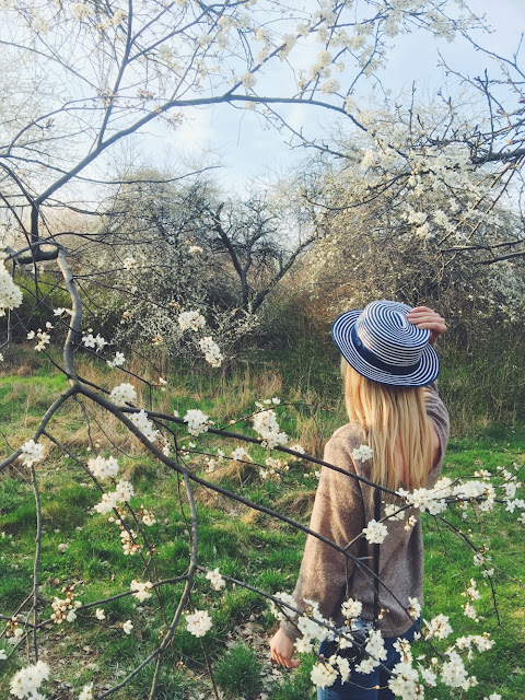 Country Life Forsythia flowers by {Cool Chic Style Fashion}