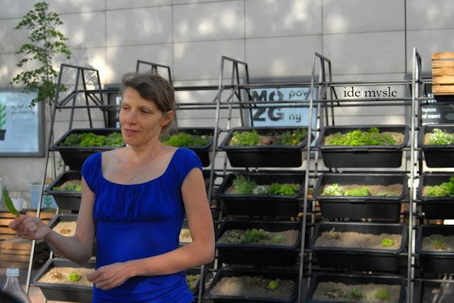 warsztaty roślinne, warsztaty kulinarne, dzikie rośliny jadalne, jadalne kwiaty, jadalne rośliny ogrodowe