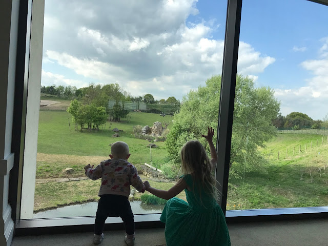A floor to ceiling window looking out in to a large green space. A 5 year old and toddler and are staring out of the window