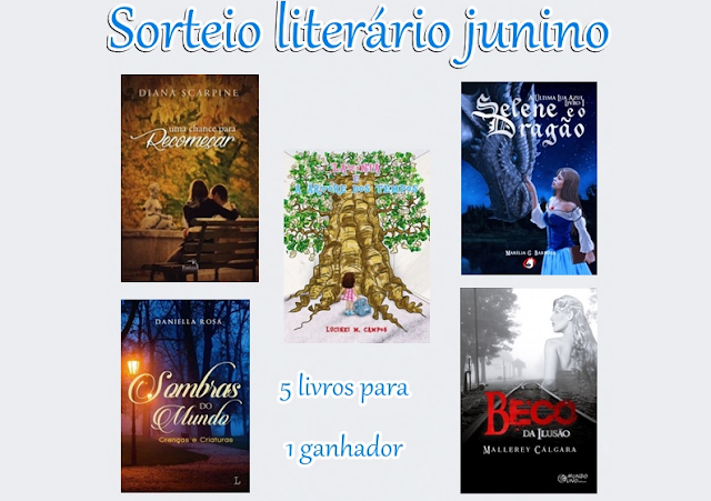 Sorteio Literário Junino
