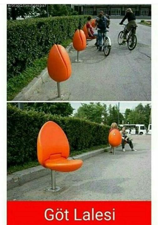 Göt Lalesi oturak