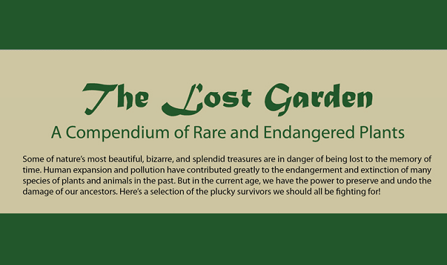The Lost Garden: A Compendium of Rare and Endangered Plants