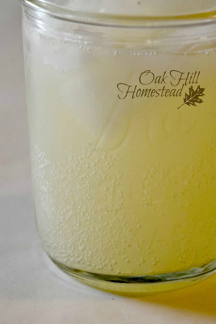 This ginger ale is naturally carbonated with lots of fizz!