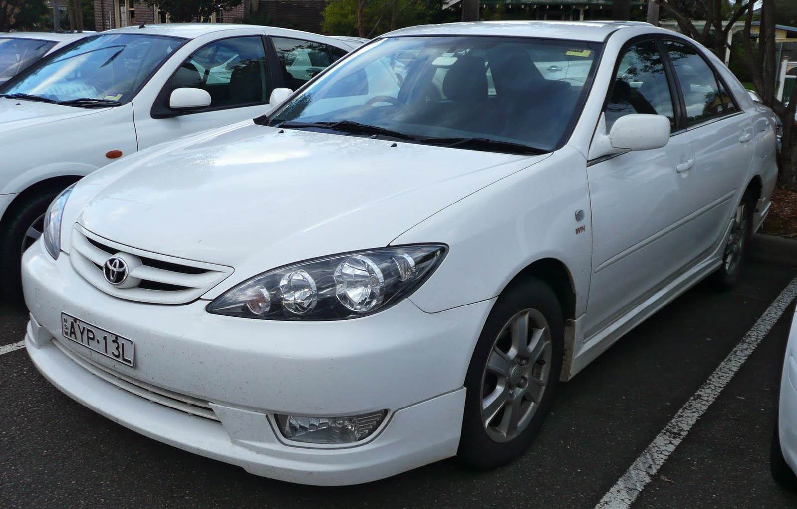 toyota camry 2005 pocket reference guide download