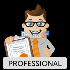 Cara Tepat Menjadi Blogger Profesional