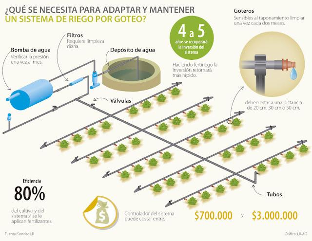 Fitosofia instalaci n de riego en cultivos intensivos - Tuberias de riego por goteo ...