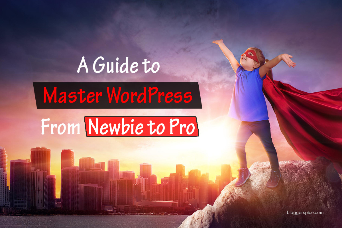 A Guide to Master WordPress: From Newbie to Pro