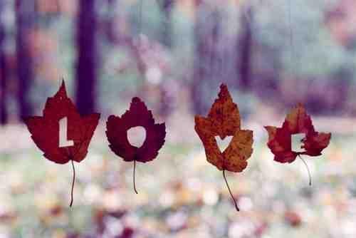 Ketika Kita Masih Mampu Merasakan Cinta, Berarti Kita Masih Memiliki Hati Nurani.