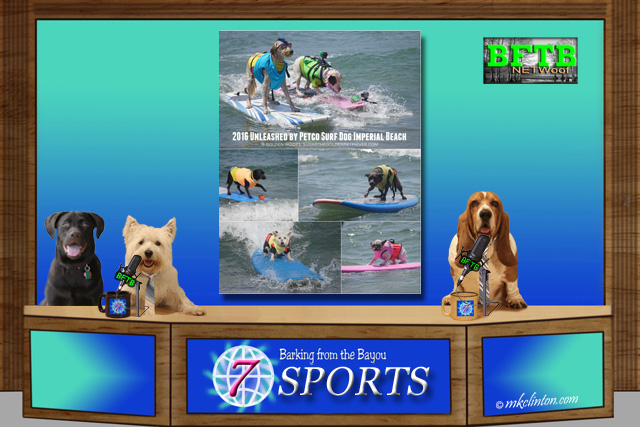 BFTB NETWoof Sports 2016 Unleashed by Petco Surfdog