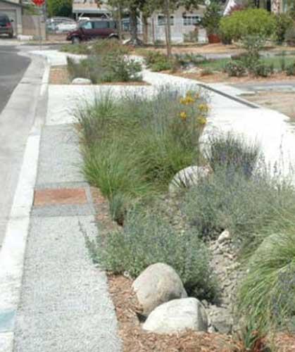 Home Landscape Designs Drought Tolerant Plants Landscape Design