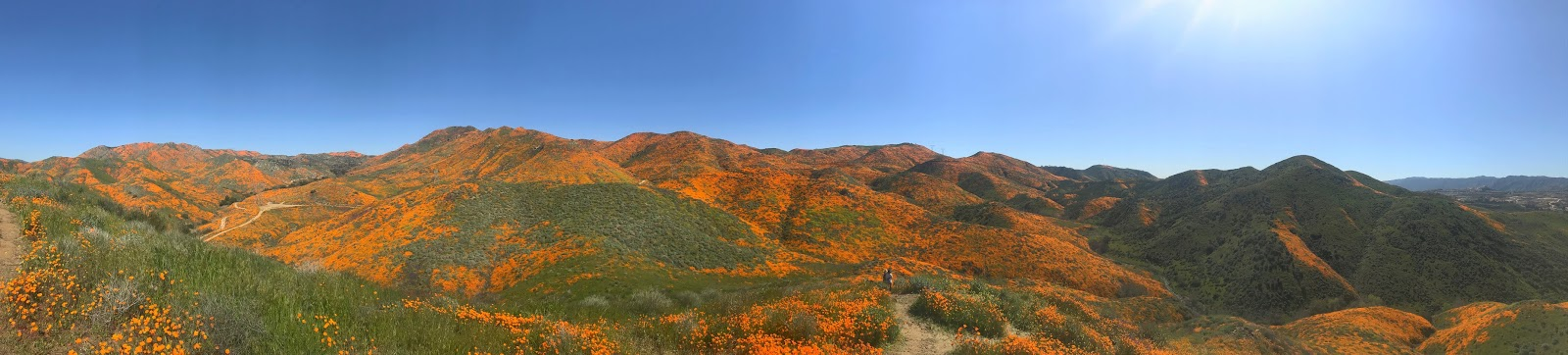 Walker Canyon panoramic