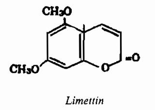 Thành phần hóa học PHẬT THỦ - Citrus medica L.var. digitata Riss - Nguyên liệu làm thuốc Chữa Ho Hen