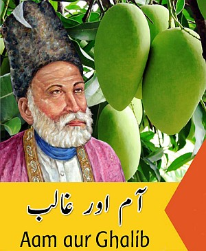 mango-and-ghalib