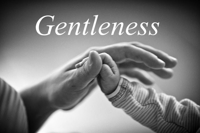 Tales from a Mother: Fruits of the Spirit: Day 9 - Gentleness