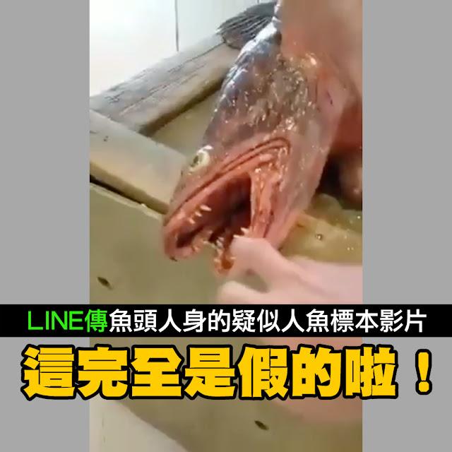 美人魚 影片 魚頭 半人半魚 藝術