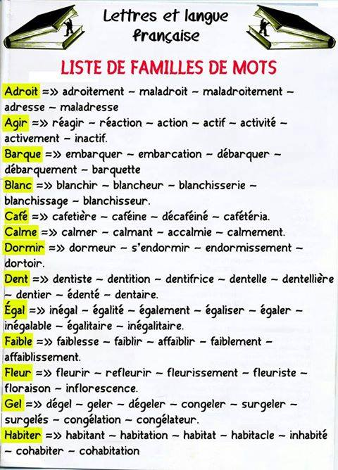 Rodzina wyrazów - teoria 6 - Francuski przy kawie