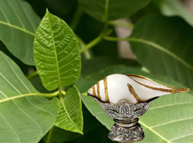 Krodh Par Niyantran Karne Hetu Shandar Upay Totke