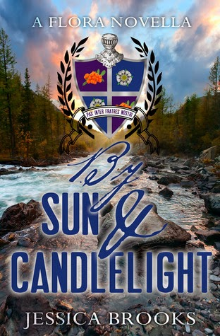 https://www.goodreads.com/book/show/21520230-by-sun-and-candlelight