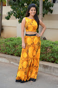 Yamini Bhaskar at Titanic movie press meet-thumbnail-12