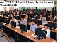 58 Daerah Ini Terancam Tidak Dapat Jatah Formasi CPNS 2018