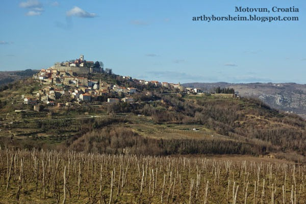 Passing vineyars as we approach Motovun Istria Croatia by car