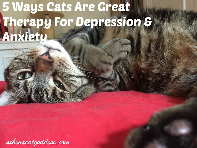 5 Ways Cats Are Great Therapy for Depression & Anxiety