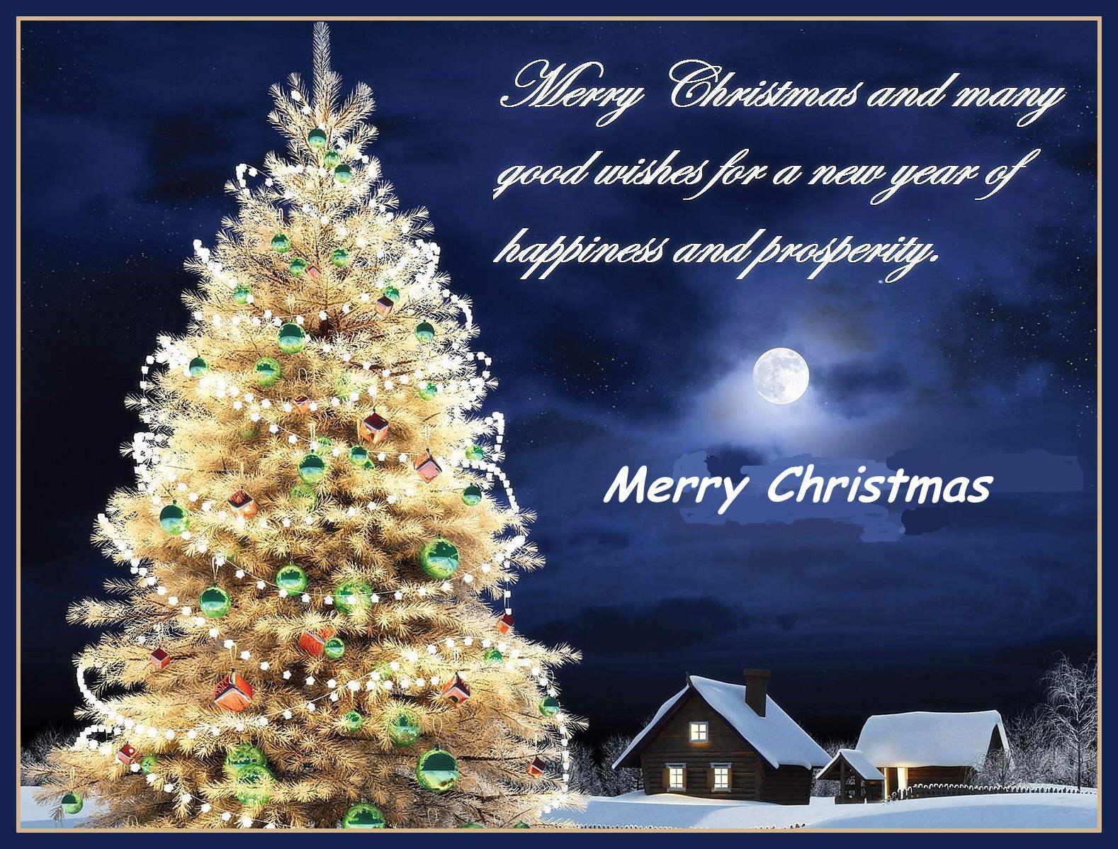 happy new year and merry christmas in hawaiian happy new