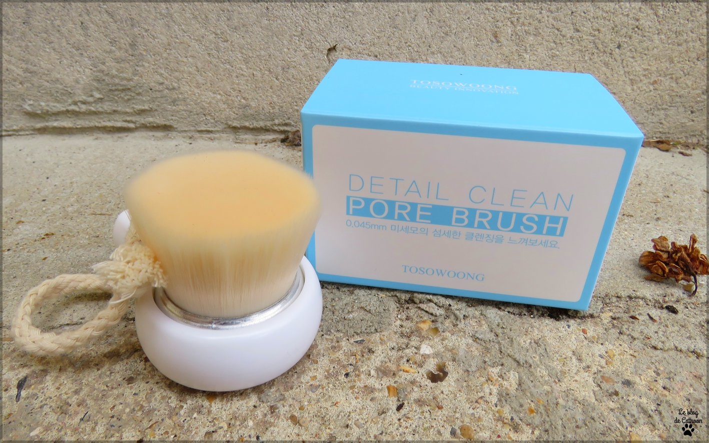 Detail Clean Pore Brush - Brosse nettoyante visage - Tosowoong