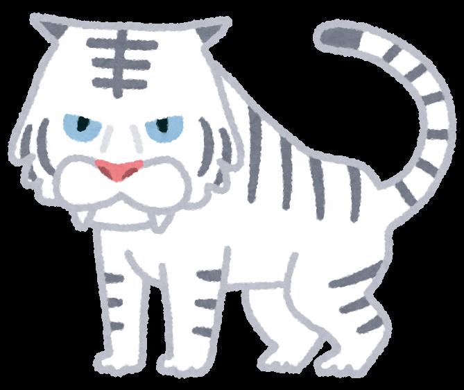 白虎四聖獣ホワイトタイガーのイラスト かわいいフリー素材集