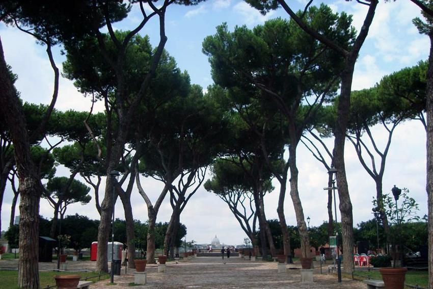 Giardino degli Aranci, czyli ogród pomarańczy