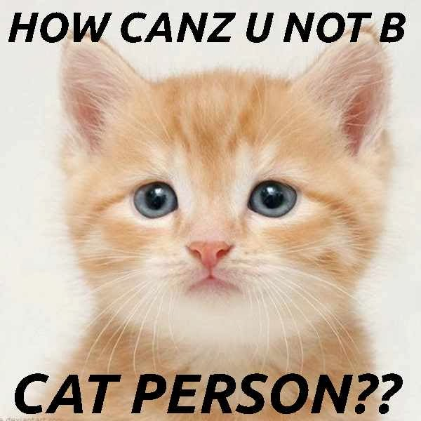 A cat is not a can