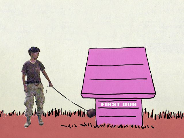 Kris Kind 2010, First dog, Digital Preview