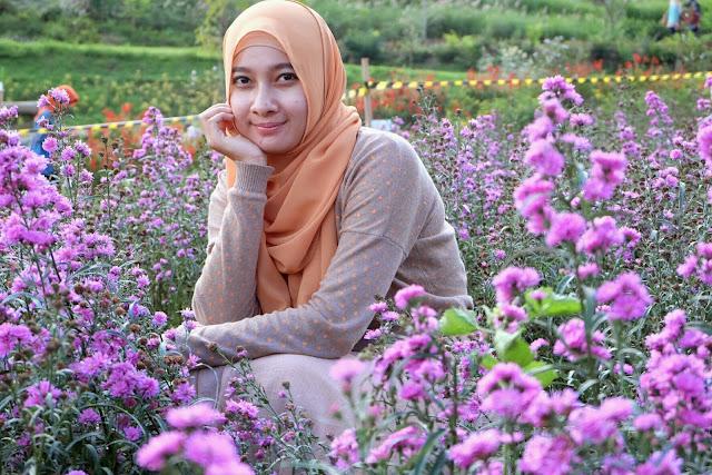 taman lavender di dusun bambu