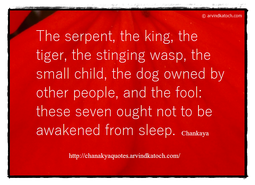 King, Tiger, serpent, fool, dog, Chanakya, Quote,