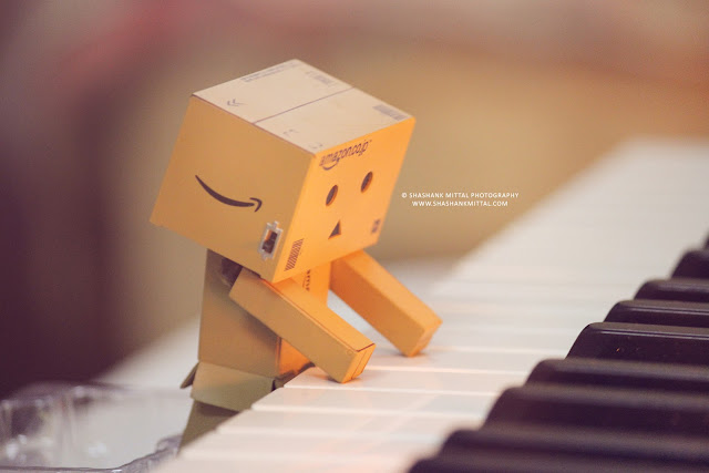 Danbo, danboard, danbo picture, danbo images, shashank mittal, shashank mittal photography, shashank, mittal