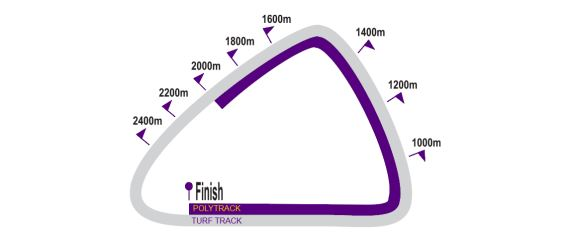 Greyille - Course Layout