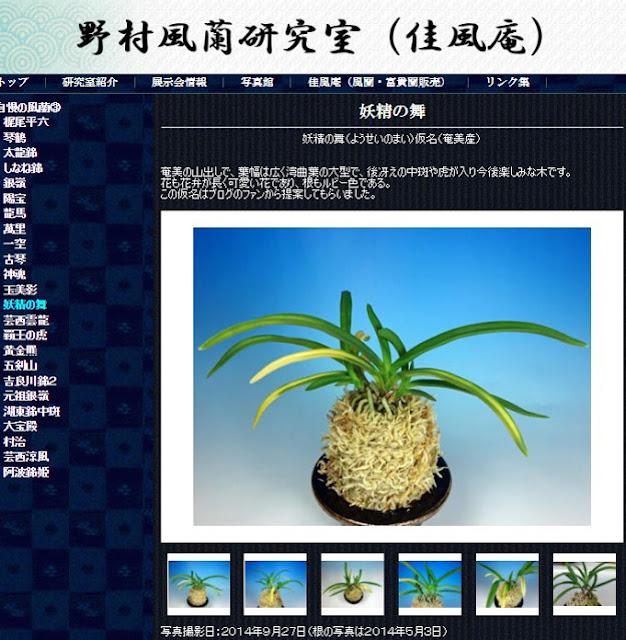 http://www.fuuran.jp/jiman_youseinomai.html