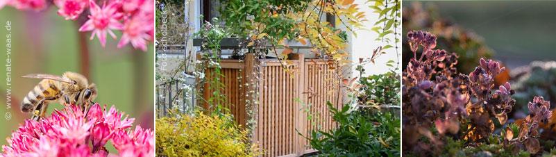 Mülltonnenbox, Mülltonnenhaus, Mülltonnenhäuschen - Ideen für die Mülltonnen finden Sie hier im Geniesser-Garten