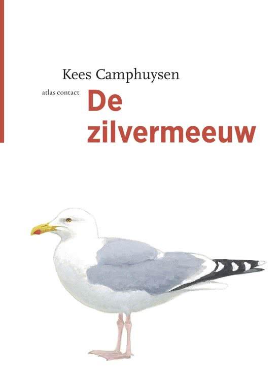 de zilvermeeuw kees camphuysen recensie boek