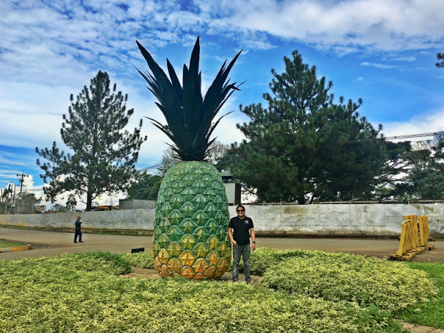 Camp Phillips Big Pineapple in Manolo Fortich Bukidnon