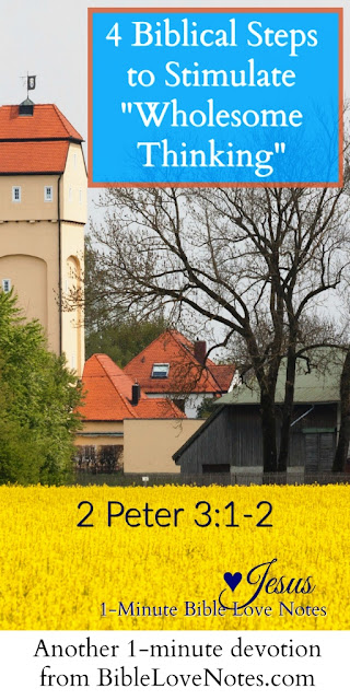 2 Peter 3:1-2, Wholesome Thinking, Bible thinking