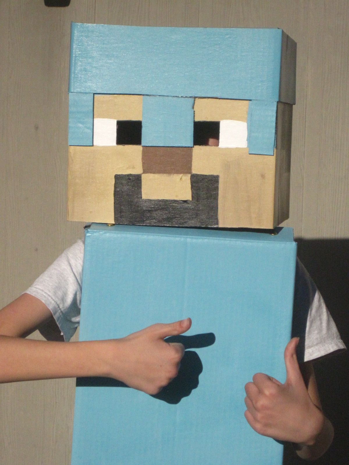 & Little House In Colorado: Minecraft Halloween Costume