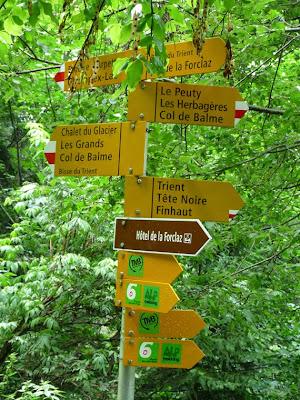 ツール・ド・モンブラン スイスのトリヤン 方向指示
