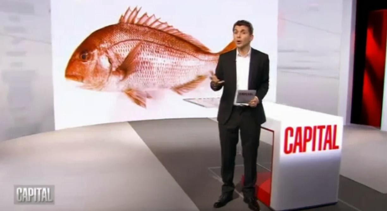 http://www.reportagestv.com/2014/02/24/capital-le-nouveau-poisson-miracle/