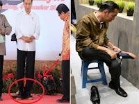"""Viral, Presiden Beli Sneakers, netizen Yakin Bakal Muncul di Olshop Merk """"Sneakers Jokowi"""""""