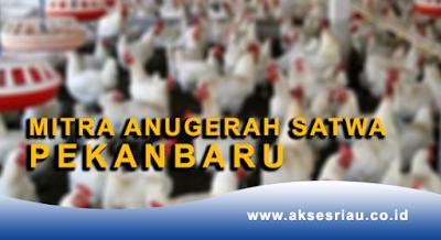 Lowongan PT. Mitra Anugerah Satwa Pekanbaru Desember 2017