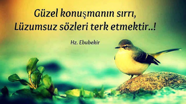 hz ebubekir sözleri {featured}