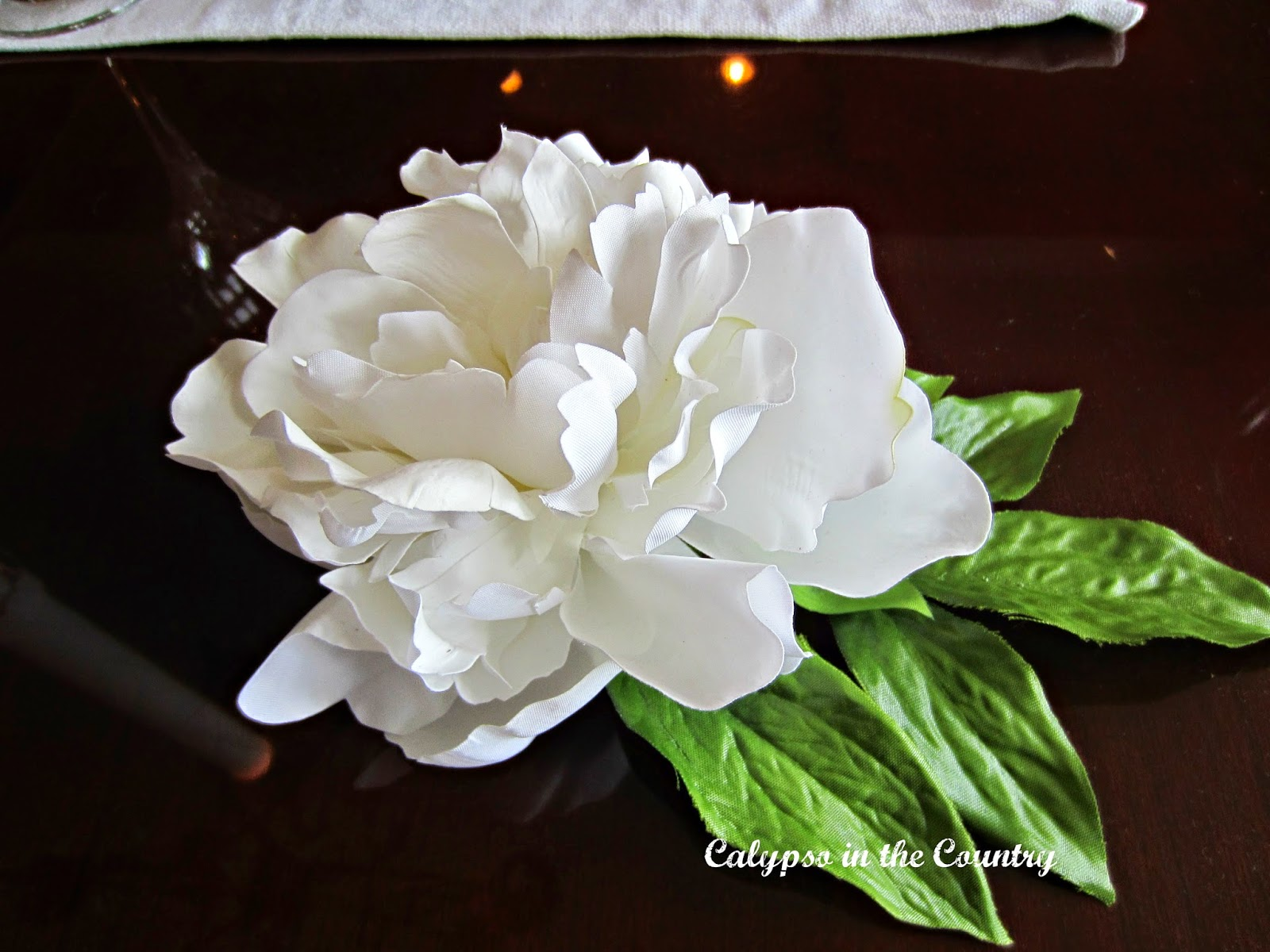 White Peony - One of Jackie Kennedy's Favorite Flowers