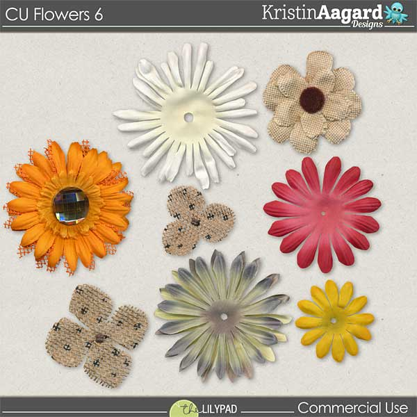 http://the-lilypad.com/store/digital-scrabooking-CU-flowers-6.html