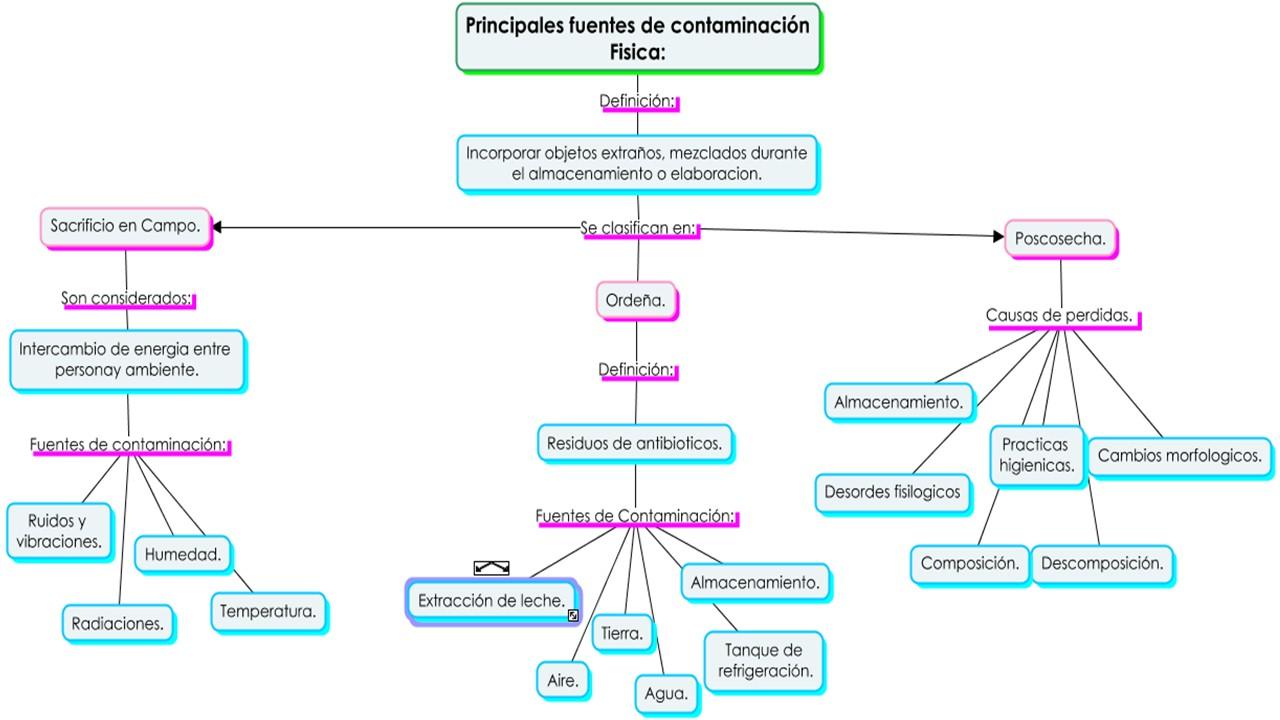 Inocuidad alimentaria inocuidad alimentaria - Fuentes de contaminacion de los alimentos ...